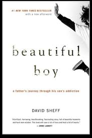 Beautiful Boy Book Essays on the Story of Meth Addiction