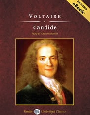 candide voltaire essay questions Voltaire's candide as vehicle to discredit optimism optimism was an attractive to  many because it answered a profound philosophical question: if god is.