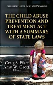 The Child Abuse Prevention and Treatment Act
