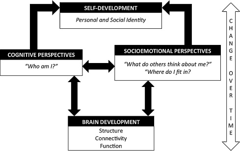 Cognitive and Psychosocial Development Case Study