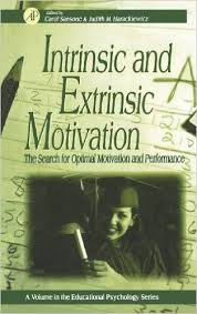 "intrinsic motivation research paper Read this business research paper and over 88,000 other research documents motivation introduction to the concept of 'motivation' according to greenberg (1999) motivation is defined ""as a process of arousing, directing and."