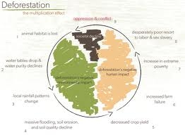 deforestation as a global issue essay Effects of deforestation essay  modern-day plague  it's being driven by demand from developed countries it's a global problem.