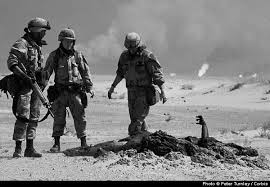 The persian gulf war essay