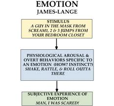 James-Lange Theory Research Papers on Emotion as a ...