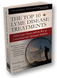 lyme disease research paper
