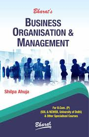 Organizational and Nonprofit Management term peper