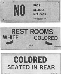 Racial Segregation Essays