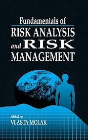 Risk management essay