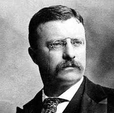 Teddy roosevelt research paper