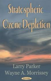 Research paper ozone depletion