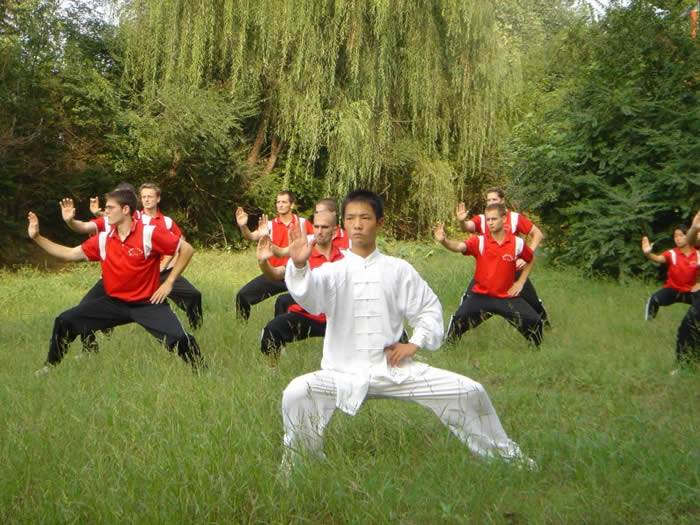 qigong research paper Qigong survived through many years before paper was invented, and it also   new research is being conducted using sophisticated equipment that may verify .